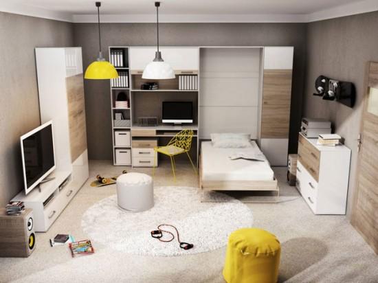 Совмещение гостиной, спальни и кабинета в одной комнате