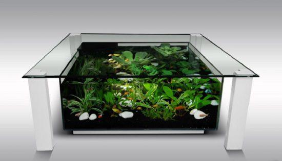 Маленький дизайнерский аквариум