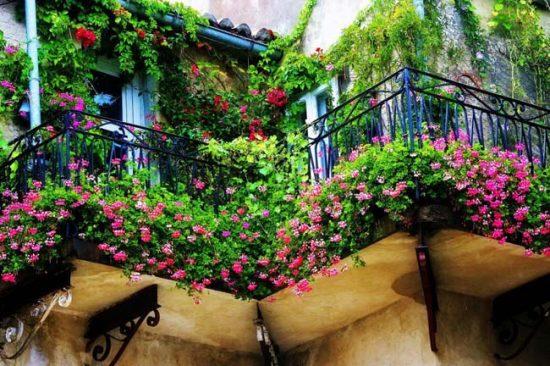 Декорирование балкона цветами