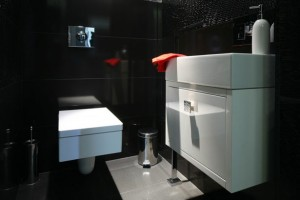 dizajn-tualeta-foto-2016-sovremennye-idei-21